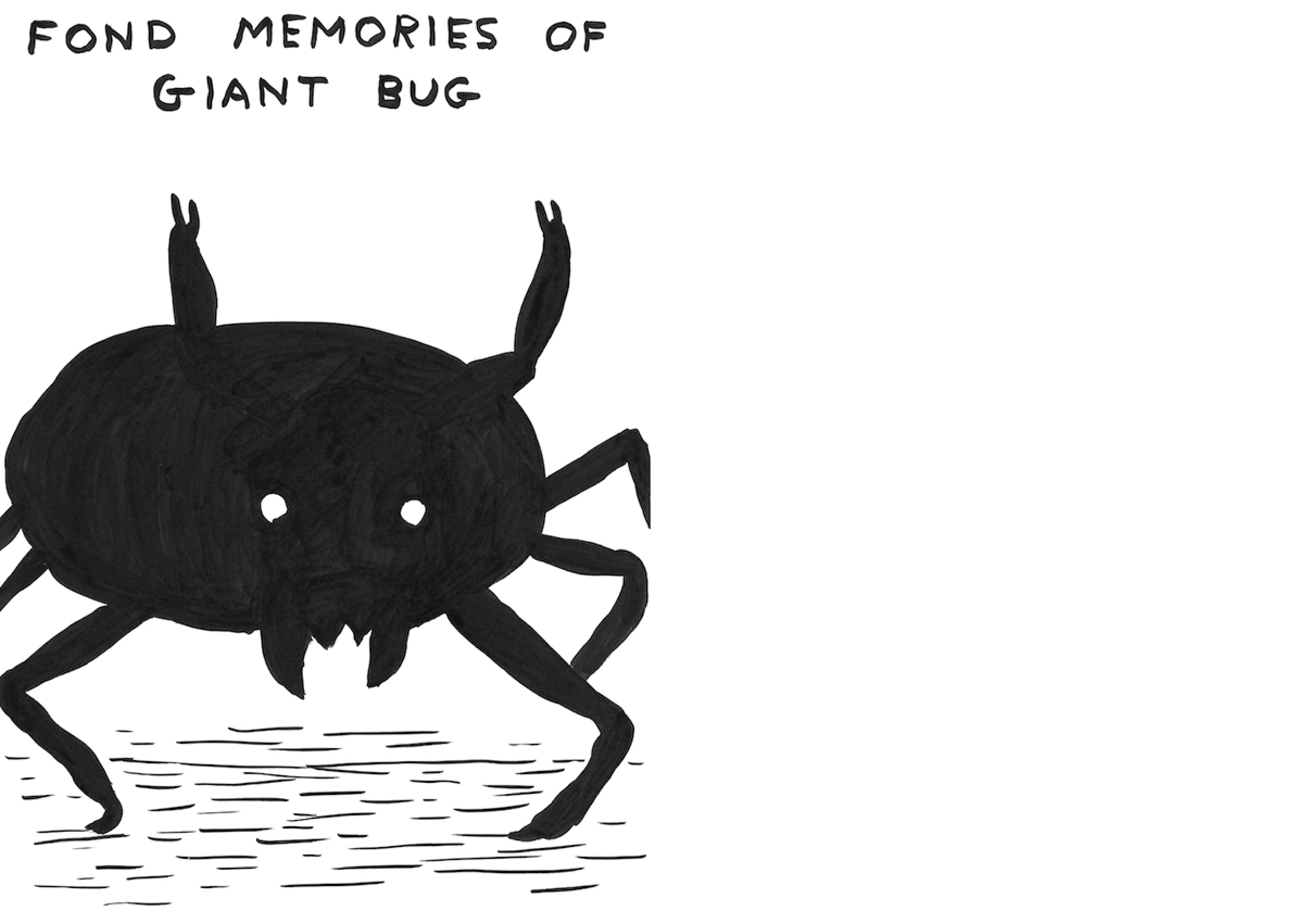 David Shrigley | Fond Memories of Giant Bug /